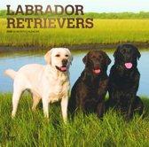 Labrador Retrievers 2020 - 18-Monatskalender