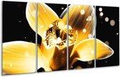 Glasschilderij Bloem   Geel, Zwart   160x80cm 4Luik   Foto print op Glas    F005133