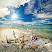 Schelpen op het strand - Prachtige Diamond Painting 30x30 cm (volledige bedekking) inclusief premium tools - TMT Diamond ®