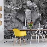Fotobehang Stone Elephant Black And White | V4 - 254cm x 184cm | 130gr/m2 Vlies