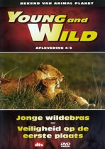 Young And Wild 4-5