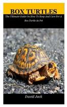 Box Turtles: The Ultimate Guide On How To Keep And Care For A Box Turtle As Pet
