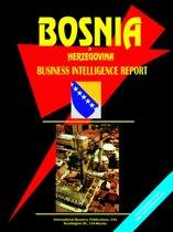 Bosnia and Herzegovina Business Intelligence Report