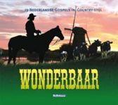 Various - Wonderbaar - 19 Nederlandse Gospels