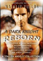 A Dark Knight Reborn Complete Collection