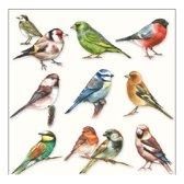 Servetten vogels thema 3-laags 20x stuks - tuinvogels lente/zomer/herfst