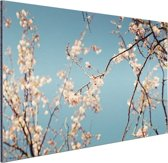Bloesem Aluminium 90x60 cm - Foto print op Aluminium (metaal wanddecoratie)