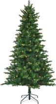 Black Box kunstkerstboom met verlichting - 185x112 cm groen - 898 zijtakken 200 lampjes