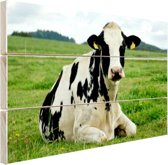 Rustende Holsteinkoe Hout 120x80 cm - Foto print op Hout (Wanddecoratie)