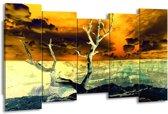 Canvas schilderij Natuur   Geel, Bruin, Wit   150x80cm 5Luik