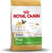 Royal Canin Mopshond/Pug Adult - Hondenvoer - 3 kg