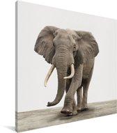 Olifant dierenprint kinderkamer Canvas 20x20 cm - Foto print op Canvas schilderij (Wanddecoratie woonkamer / slaapkamer)