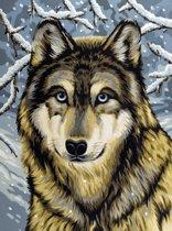 Schilderen op nummer - wolf