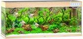 Juwel Rio 240 LED Aquarium - Houtkleur - 240L - 121 x 41 x 50 cm