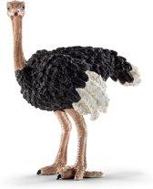Schleich Struisvogel - Speelfiguur