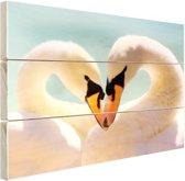 Zwanen koppel Hout 120x80 cm - Foto print op Hout (Wanddecoratie)