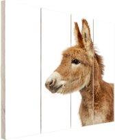 FotoCadeau.nl - Kleine ezel Hout 20x30 cm - Foto print op Hout (Wanddecoratie)