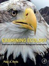 Examining Ecology