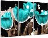 Glasschilderij Tulp | Blauw, Grijs | 120x80cm 3Luik | Foto print op Glas |  F005072