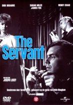 Servant (D)