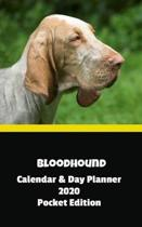 Bloodhound Calendar & Day Planner 2020 Pocket Edition