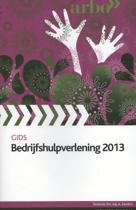 2013 gids bedrijfshulpverlening