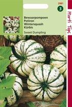 Hortitops Zaden - Wintersquash Sweet Dumpling (Cuc. Pepo)