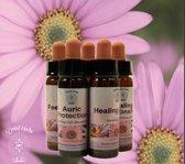 Crystal Herbs Being Present, Belief Patterns Essence (10 ml)