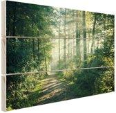 FotoCadeau.nl - Zonnige oktobermorgen in het bos Hout 60x40 cm - Foto print op Hout (Wanddecoratie)