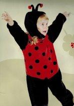 Dreamland - verkleedkleding - Lieveheersbeestje - 2 delig - maat 98