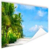 Palmbomen op tropisch strand foto Poster 120x80 cm - Foto print op Poster (wanddecoratie woonkamer / slaapkamer) / Zee en Strand