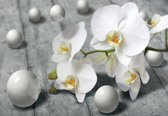 Fotobehang Modern Abstract Flowers Design | XXXL - 416cm x 254cm | 130g/m2 Vlies
