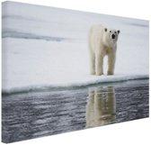 Ijsbeer bij het water Canvas 60x40 cm - Foto print op Canvas schilderij (Wanddecoratie woonkamer / slaapkamer) / Dieren Canvas Schilderijen