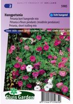 Sluis Garden Petunia, Kort Hangende Mix