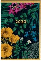 Botanic Mini Agenda 2020