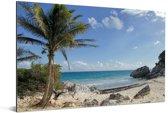 Een strand in de Maya-ruïnes van Tulum in Mexico Aluminium 180x120 cm - Foto print op Aluminium (metaal wanddecoratie) XXL / Groot formaat!