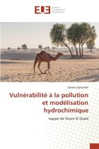 Vuln rabilit La Pollution Et Mod lisation Hydrochimique