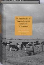 Nederlandse en Vlaamse literatuur vanaf 1880 in 200 essays