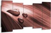 Schilderij | Canvas Schilderij Macro, Druppel | Bruin, Rood | 150x80cm 5Luik | Foto print op Canvas