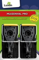 Muizenval Pro