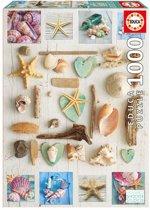 Educa puzzel - Schelpen uit de zee  - 1000 stukjes