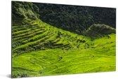 Zonnige dag boven de Rijstterrassen van Banaue in de Filipijnen Aluminium 180x120 cm - Foto print op Aluminium (metaal wanddecoratie) XXL / Groot formaat!