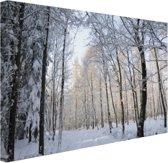 Besneeuwd bospad Canvas 30x20 cm - Foto print op Canvas schilderij (Wanddecoratie)