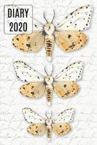 2020 Daily Diary Journal, Moths
