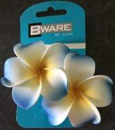 Bware! Bloem Blauw