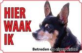 Bord - Hond-Dwergpinscher