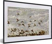 Foto in lijst - Zwerm paarse strandlopers aan de kust fotolijst zwart met witte passe-partout 60x40 cm - Poster in lijst (Wanddecoratie woonkamer / slaapkamer)