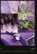 Coloured Days Kalender 2017