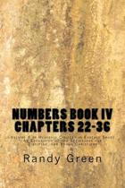 Numbers Book IV