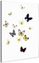 Vlinders op witte achtergrond Aluminium 120x180 cm - Foto print op Aluminium (metaal wanddecoratie) XXL / Groot formaat!